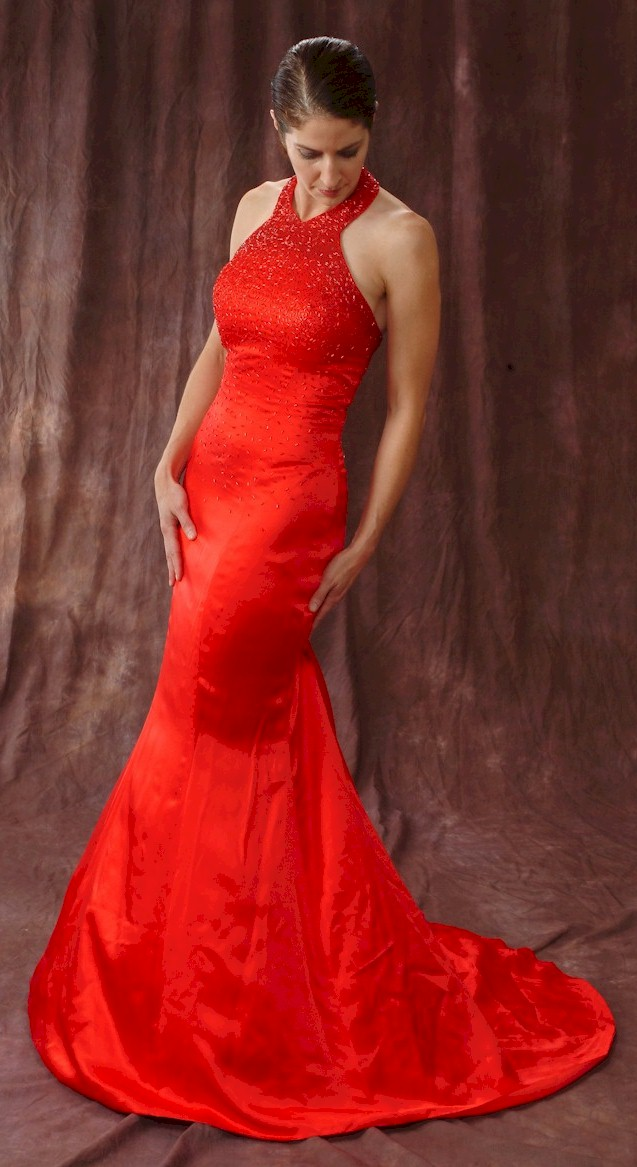 Evening Gowns Dress