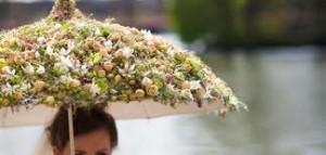 flower bumbersoll