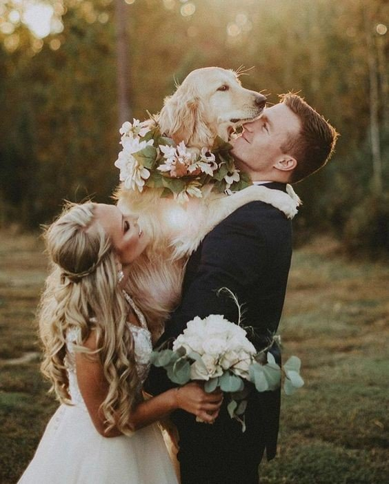 Bride and Groom with their Adorable Furry Baby (Dog)