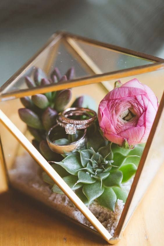 Terrarium Ring Case With Lovely Plants